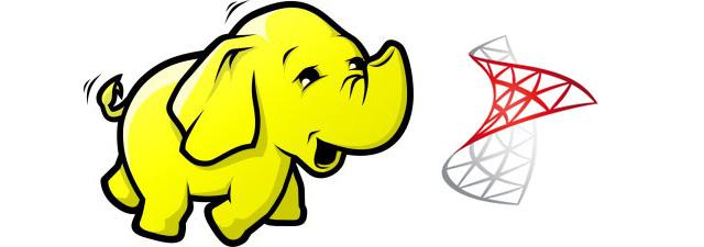 Hadoop and SQL Server logo